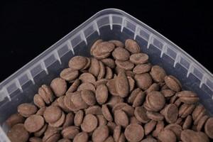 גאיה - שוקולד נוגט