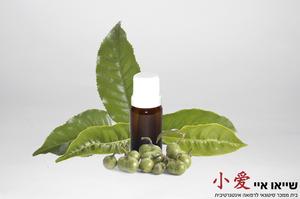 שמן עץ התה 10 מל