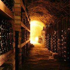 ליישן יין ולהזהר