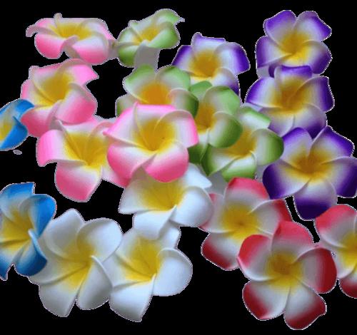 פרח ליליות
